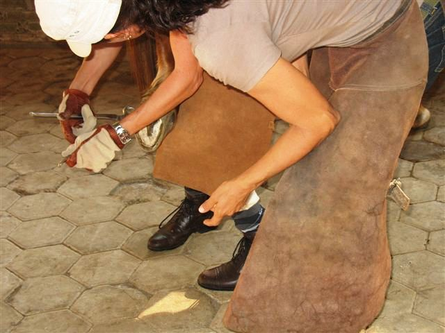 course natural hoof care